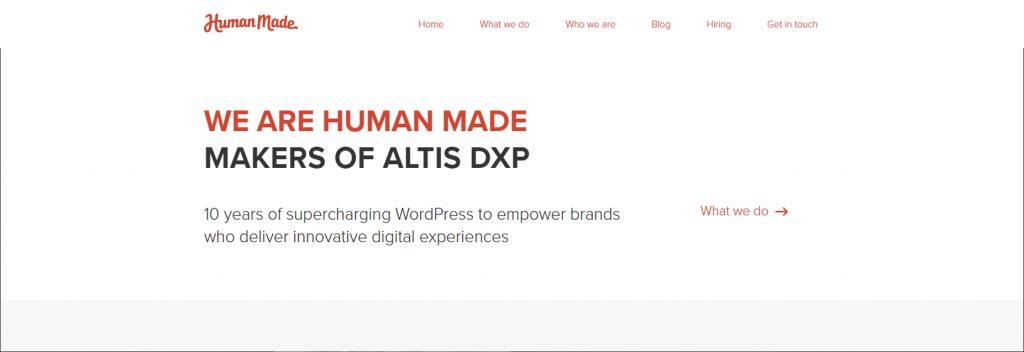 Human Made, Australian Best WordPress Company, Ollzo